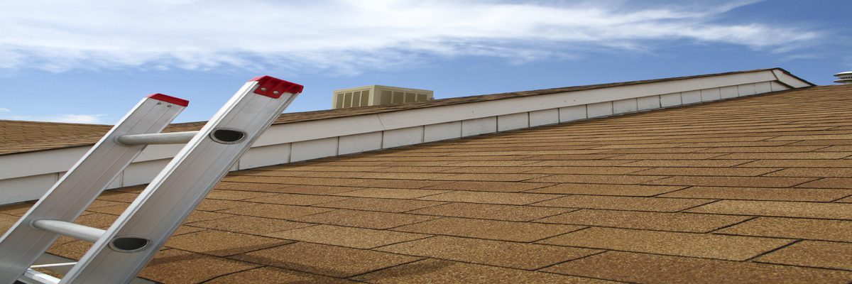 rsz_a-plus-new-roof-florida